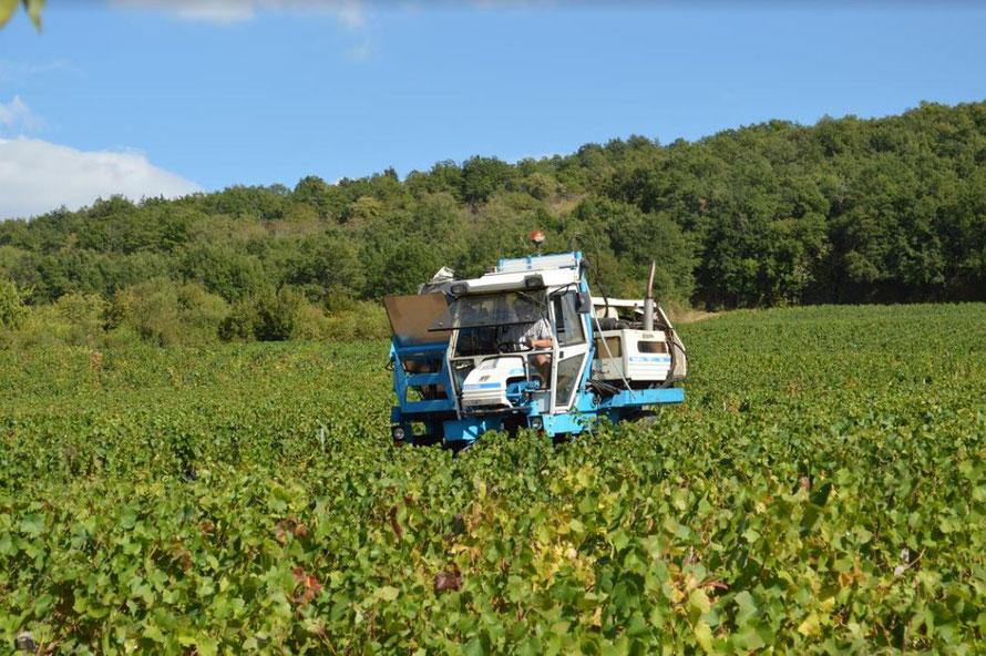 Extreme klimaatveranderingen in de Bourgogne