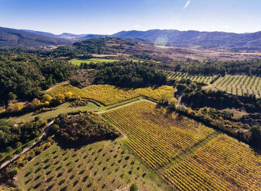 Vive le Languedoc-Roussillon!