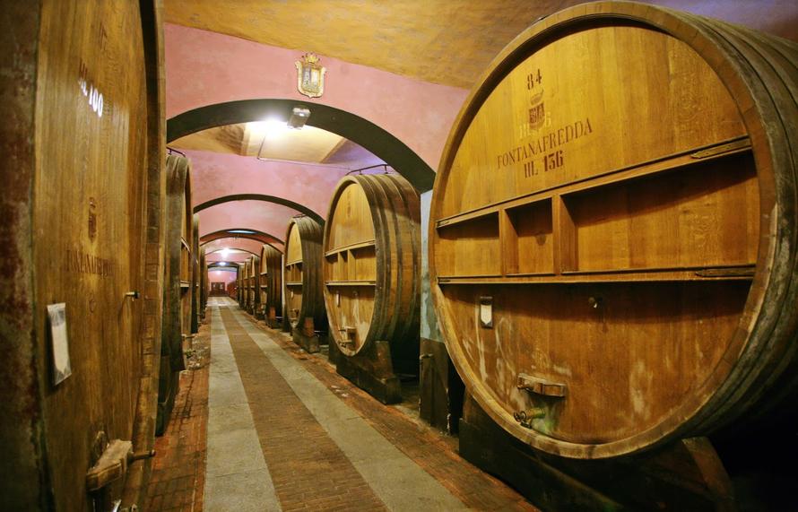 De druif van Piemonte: Nebbiolo