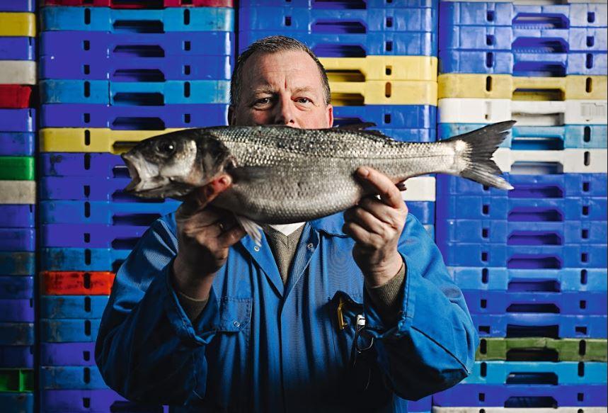 Schollekoppen en viswijven