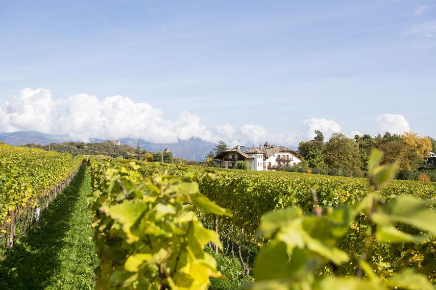 De wijnstraat van Zuid-Tirol