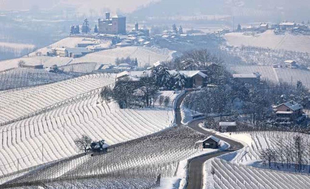 Winter op het Wijndomein