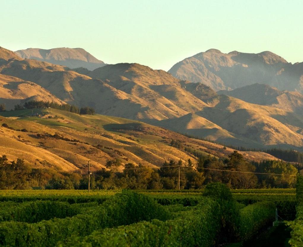 Waihopai Valley, Marlborough | Nieuw-Zeeland