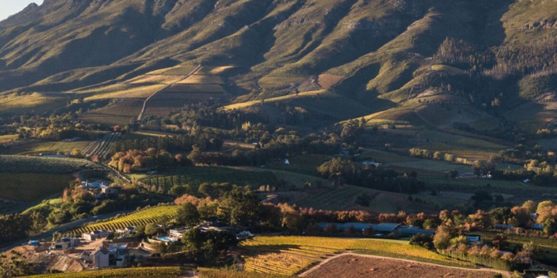 Delaire Graff Estate; Verborgen diamant in het Kaapse wijnlandschap