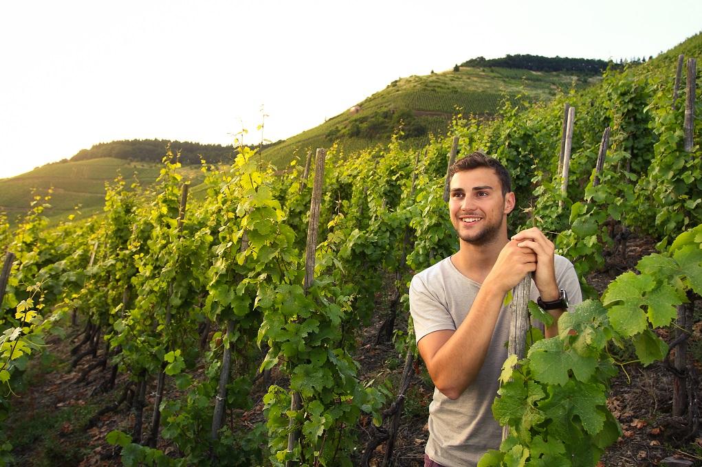 De laatste Druppel; De knappe wijnmaker: Christopher